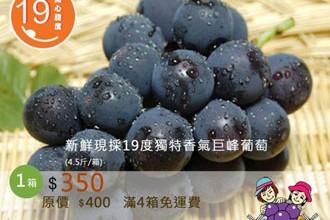 【新鮮採收-*直接買吃當季*】菜籃裡的小革命!
